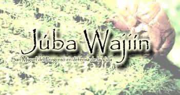 Juba Wajiin - imagen