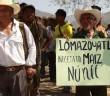 NOTA INFORMATIVA| Exigen comunidades indígenas de la Montaña de Guerrero garantías a su derecho a la alimentación