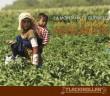 INFORME | La Montaña de Guerrero: Tierra de Mujeres Migrantes