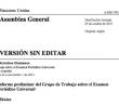INFORMES   Informe preliminar del Grupo de Trabajo sobre el Examen Periódico Universal: México