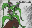 Nuestros Derechos como Pueblos Indígenas