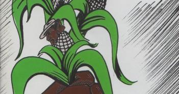 Folleto Derechos Pueblos Indigenas