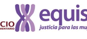 Organizaciones feministas carta a Mayagoitia SCJN