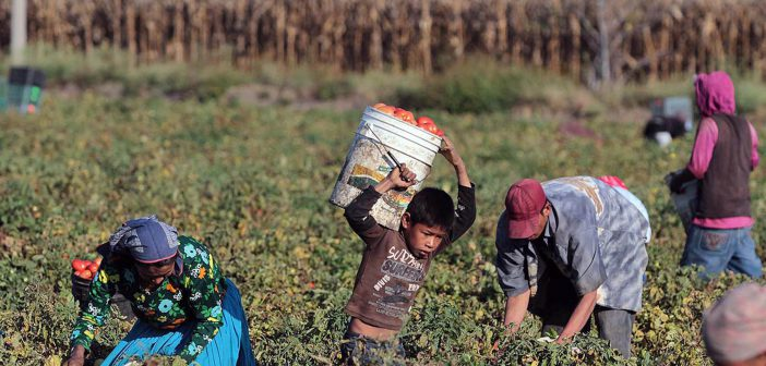 RADIO | ¿Qué es el Centro de los Derechos del Migrante?
