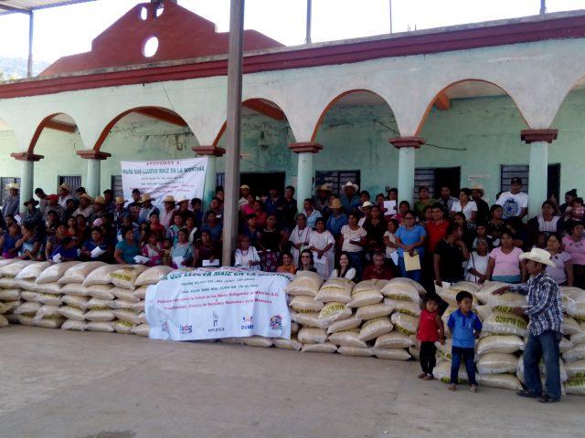BOLETÍN | Llevan maíz a comunidades organizadas de la Montaña para que continúen en lucha