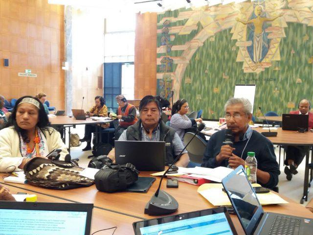 BOLETÍN | Ante experta de la ONU, Tlachinollan expuso medidas de protección propias de comunidades indígenas ante criminalización y violencia por defender sus derechos