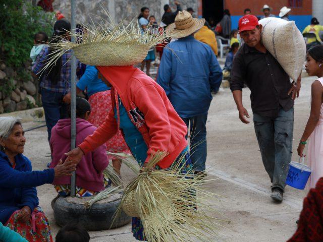 Nota informativa / Inició la entrega de maíz a Consejo de Comunidades Damnificadas de la Montaña