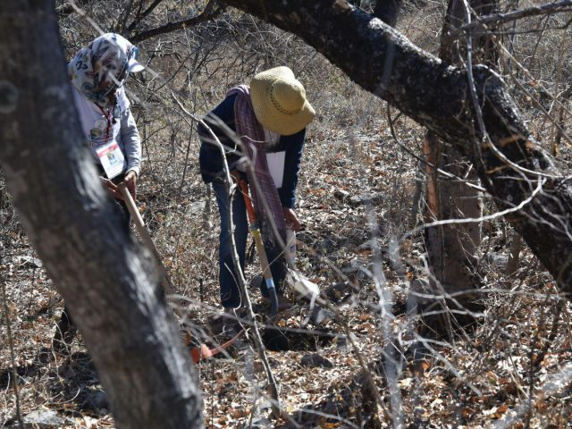 Fotogaleria | 4ta Brigada de Búsqueda de personas desaparecidas en estado de Guerrero