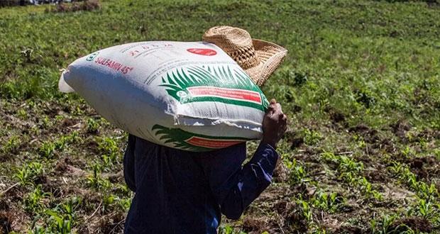 OPINIÓN | El fertilizante en tiempos del COVID – 19