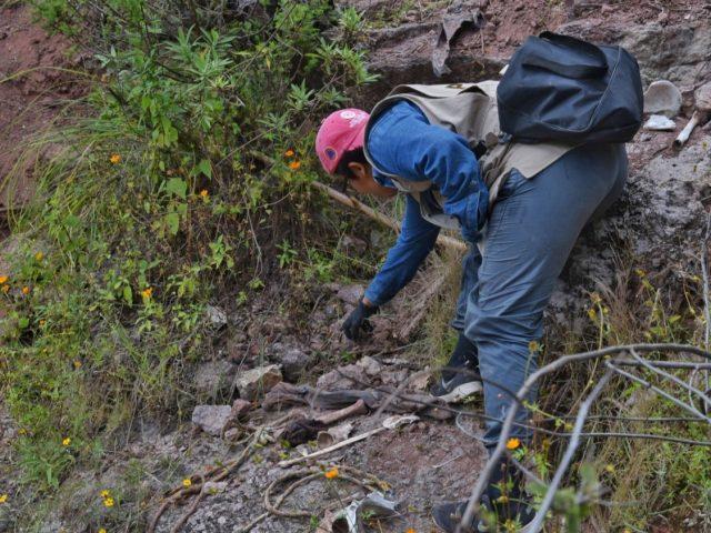 NOTA INFORMATIVA   De la violencia endógena a la violencia macrodelincuencial en la Montaña de Guerrero