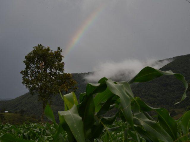 OPINIÓN | El arcoíris de la Montaña